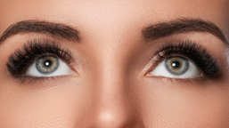 Designer Lashes and Brows